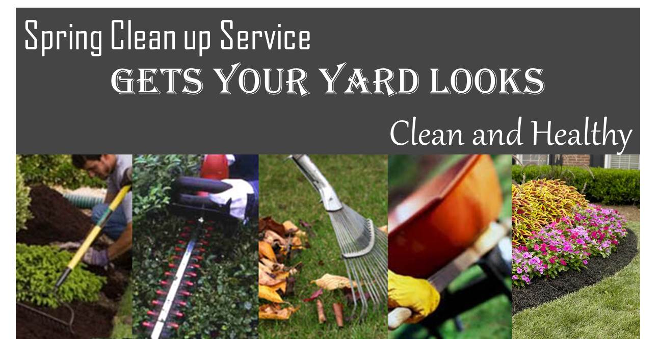Spring Clean up - Spring Clean Up Early Season Lotus Landscape, LLC